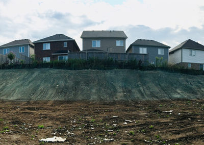Commercial Berm Construction and Hydro Seeding 3