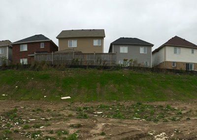 Commercial Berm Construction and Hydro Seeding 4
